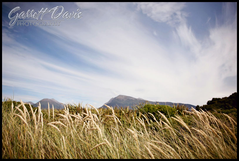 new zealand wedding photographer-auckland wedding photographer-los angeles wedding photographer